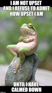 Frog Memes - sulking frog memes imgflip