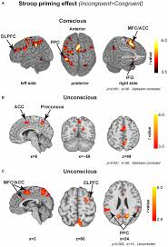 frontiers comparing the neural correlates of conscious and