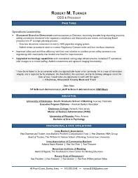 executive resume writers business20executive20sle20resume