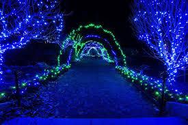 Boylston Botanical Garden Gardens Of Light Tower Hill Botanical Garden Christmaslights