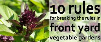 How To Plant A Vegetable Garden In Your Backyard by 10 Rules For Growing Vegetables In The Front Yard Outlaw Garden