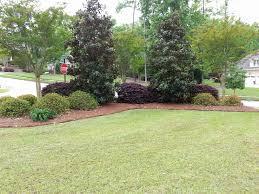 Garden Shrubs Ideas Picture 30 Of 46 Landscape Shrub Ideas Inspirational Small