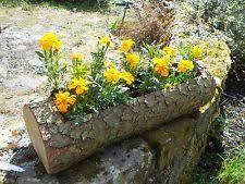 9 best logs u0026 branches images on pinterest herb garden planter