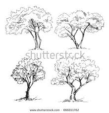 sketch stock images royalty free images u0026 vectors shutterstock