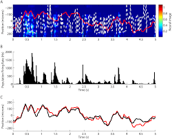 high accuracy decoding of dynamical motion from a large retinal