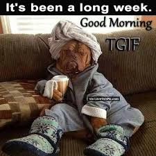 Funny Tgif Memes - good morning its been a long week tgif pictures photos and images