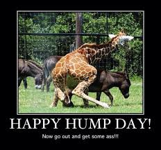 Hump Day Meme Funny - inspirational hump day memes 18 hump day meme funny dirty hump day
