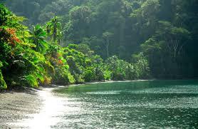 rainforest lodge u0026 yoga retreat costa rica hotels for sale