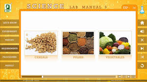 evergreen publications candid science lab manual class 6