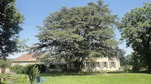 chambre d hote le creusot chambre d hote le creusot lovely chambre d h tes n 2458 fontaines sa