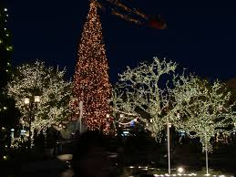 beverly hills christmas lights tree at the grove beverly hills christmas lights pinterest