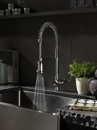 Kitchen Sink Faucet Sprayer Charming Kitchen Sink Faucet With Sprayer Also Bathroom Elegant