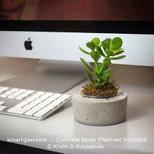 Small Plants For Office Desk by 100 Small Plants On Desk Plant Stand Astounding Small