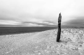 cape cod in black and white rtx traveler