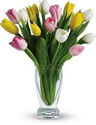 Tulip Bouquets Symbolic Meaning Of The Tulip Teleflora