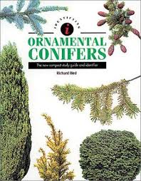 identifying ornamental conifers the new compact study guide and