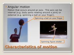 year 11 biomechanics with levers force summation