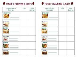 food calorie chart vegetable calorie chart best 20 food calorie