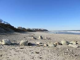 Massachusetts beaches images Priscilla beach massachusetts wikipedia jpg