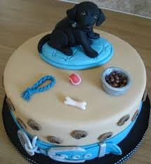 birthday cakes for dogs birthday cake ideas special birthday cakes for dogs birthdays