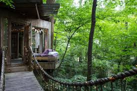 The Best Tree House Vacation Rentals  Tasting Table