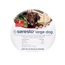 Are Igloo Dog Houses Warm Petmate Indigo Dog House Review