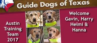 Dogs For The Blind Jobs Guide Dogs Of Texas