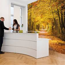 best wallscapes phototex removable paste free wall covering
