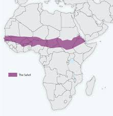 sahel desert map forecasting climate with help from the baobab tree