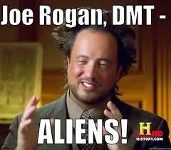 Joe Rogan Meme - joe rogan dmt quickmeme