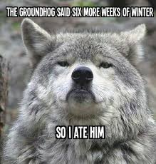 Groundhog Meme - scumbag groundhog
