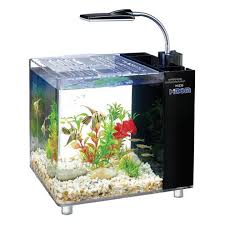 Fish Tank Desk by Small Aquarium Fish Sequa For