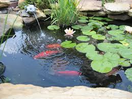 Small Backyard Pond Ideas Ideas Small Backyard Fish Pond Pond Small Patio Ideas