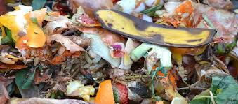 compost cuisine composting vs anaerobic digestion and the potential of biogas a