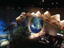 visiting the perot museum of science in dallas tx splendry
