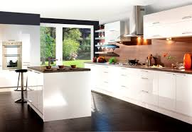 bathroom appealing high gloss white kitchen cabinets cabinet