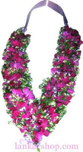 indian wedding garland price orchid garland sri lanka online shopping site for birthday cakes