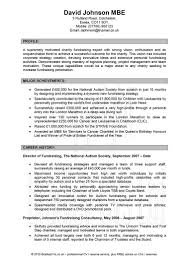 Profile Examples For Resume by Resume Example For Resume Writing