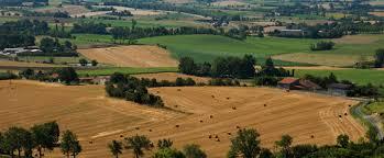 chambre agriculture albi soutien à l agriculture