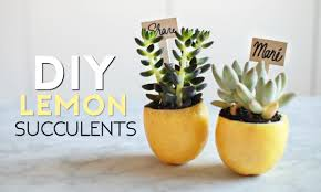 diy lemon succulent place cards cute summer 2016 party decor