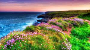 landscape shore sea green grass spring dunmore east