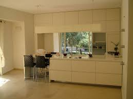 Interiors Of Kitchen Kitchen Dazzling White Stained Wooden Kitchen Cabinet