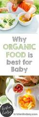 why organic food is best for baby kristen lindsay
