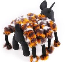 Funny Dog Costumes Halloween 25 Dog Spider Costume Ideas Spider Dog