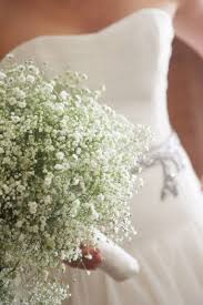 baby s breath bouquets bouquet bridal baby s breath bouquet