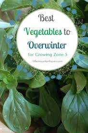 Growing Zone Map Usa by 68 Best Gardening In Zone 5 Images On Pinterest Dream Garden