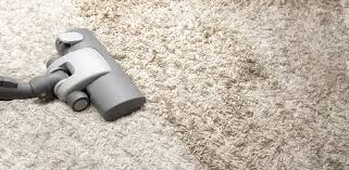 carpet upholstery cleaning water mold damage restoration