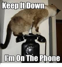 On The Phone Meme - keep it down i m on the phone meme on me me