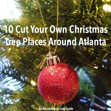 10 cut your own christmas tree places around altanta 2014 guide