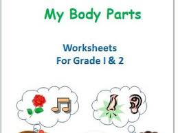 body parts and sense organs for grade 1 and 2 by ritureddi
